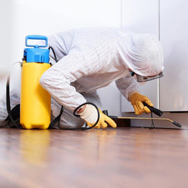 Chutplus cleaning service